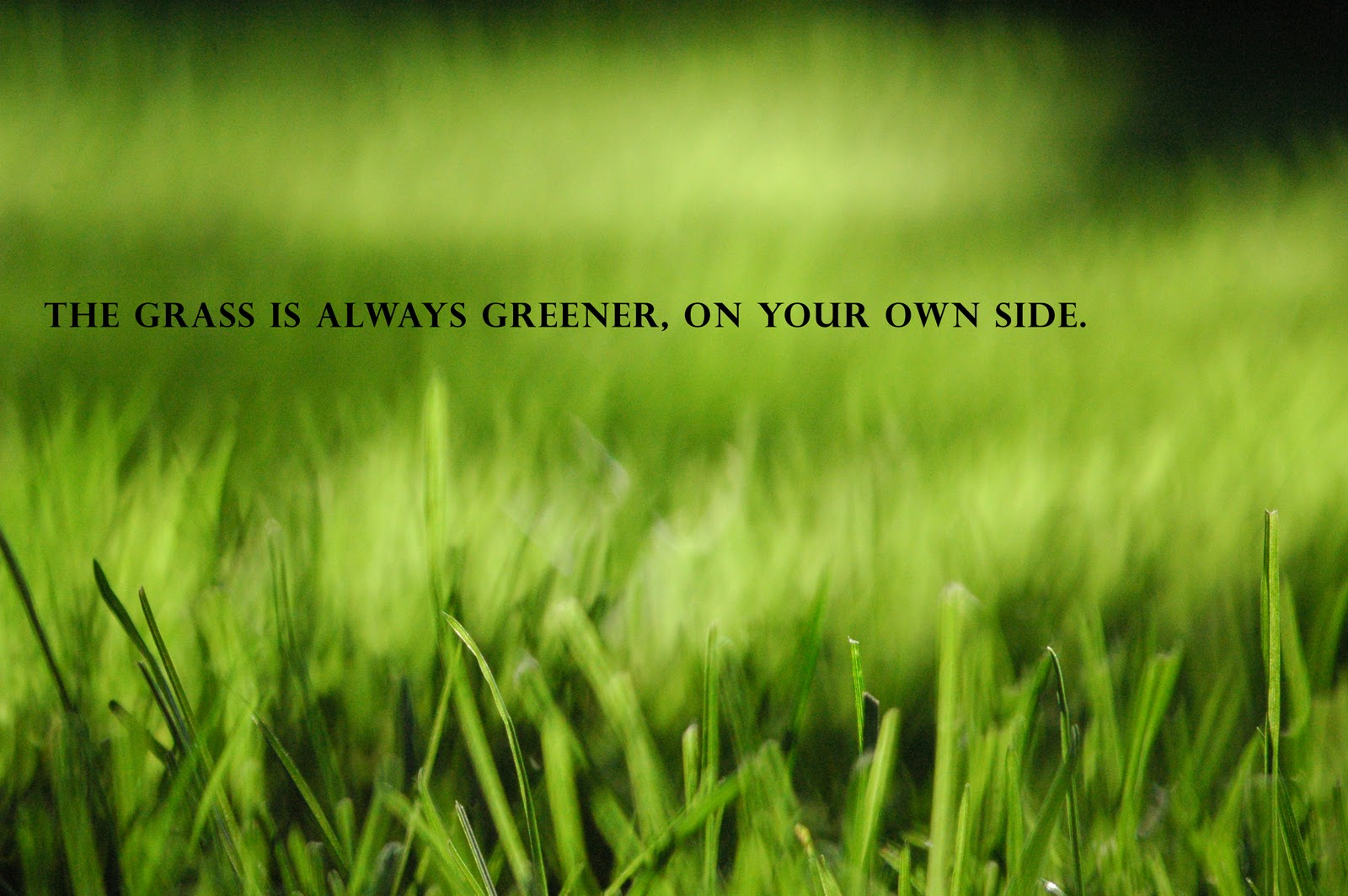 Grass always greener other side